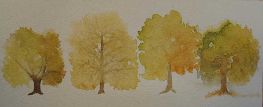 Four trees by Jackie